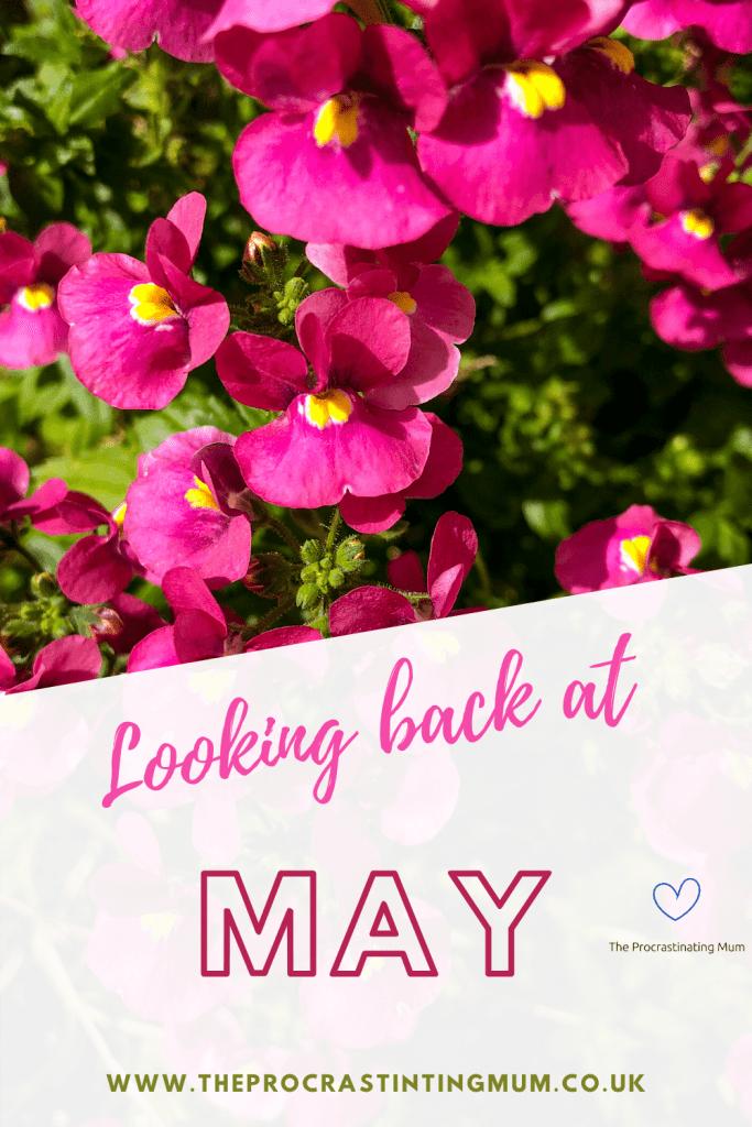 Looking back at May Pinterest Pin