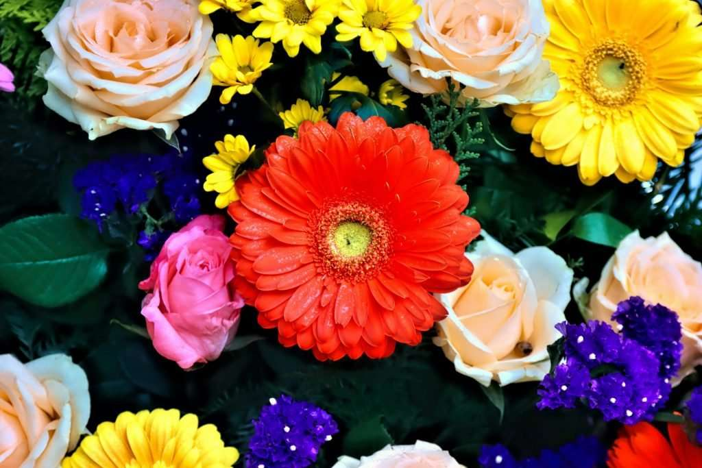 Lots of brightly coloured, different sized flowers