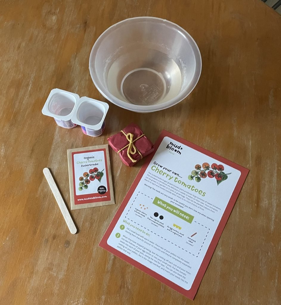 On a wooden table is a small bowl of water, 2 empty yoghurt pots, a wooden lolly stick, a small packet of cherry tomato seeds, a small square packet wrapped in red tissue paper and an A5 instruction sheet