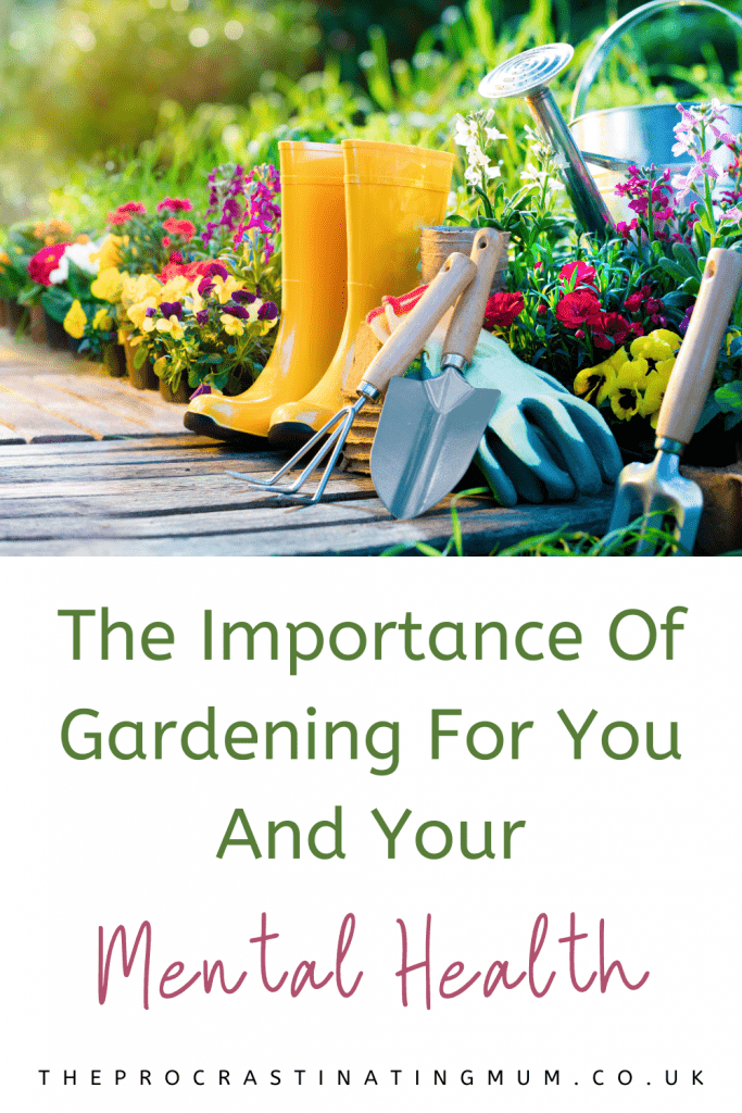 The Importance Of Gardening For You And Your Mental Health Pinterest Pin