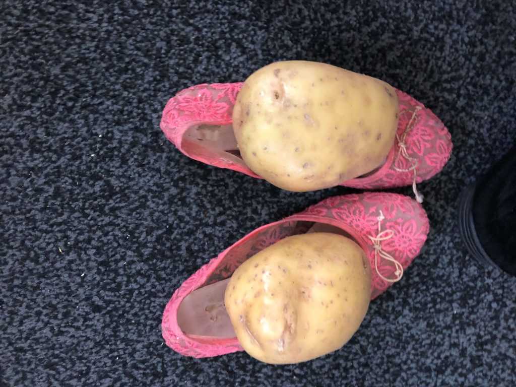 Two huge potatoes have been placed in/on top of a pair of pink dolly shoes